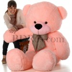 6 fit teddy bear
