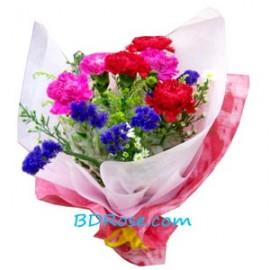 Cute Carnations