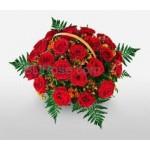 Expression Red Roses Basket