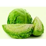 Cabbage (Badhacopi) 2pcs