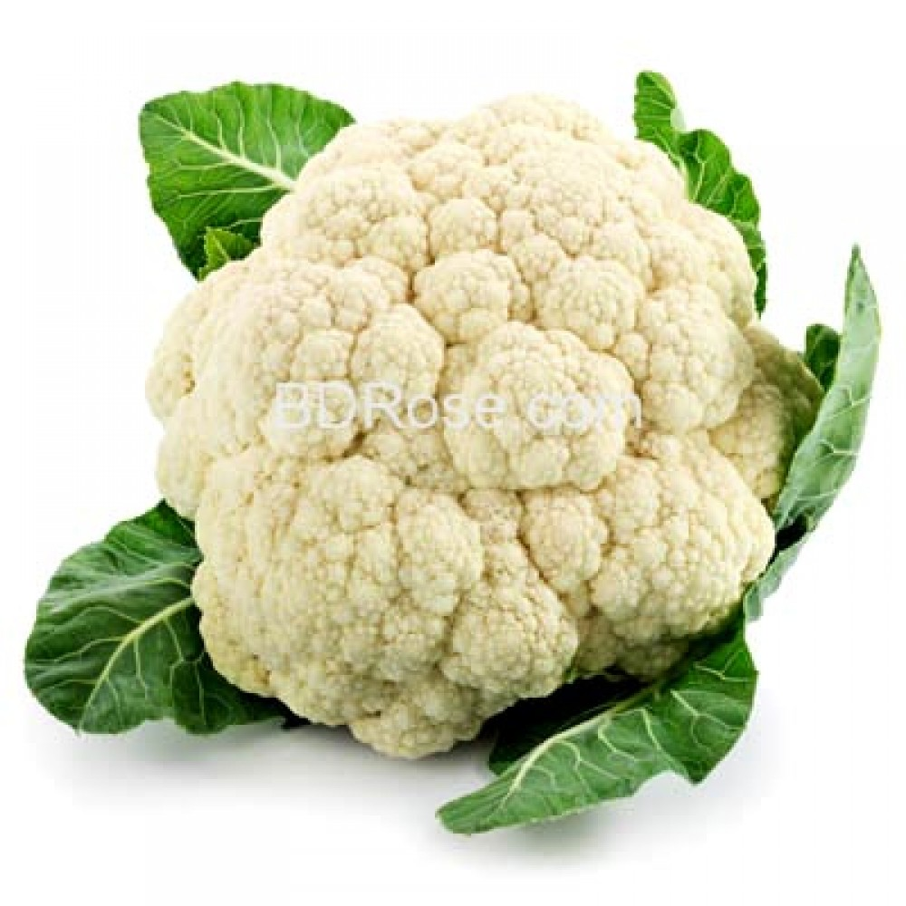 Cauli Flower (Fullcopi)