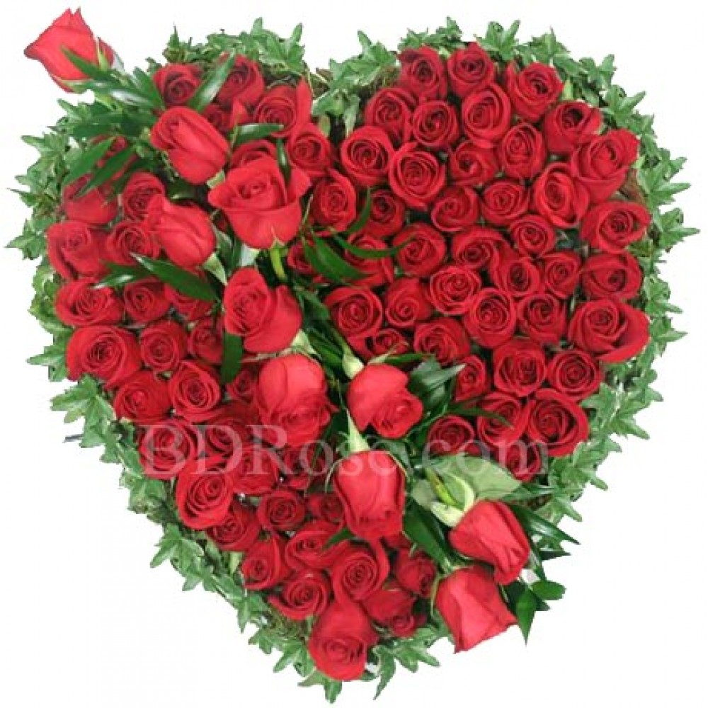 100 pcs red roses in a basket