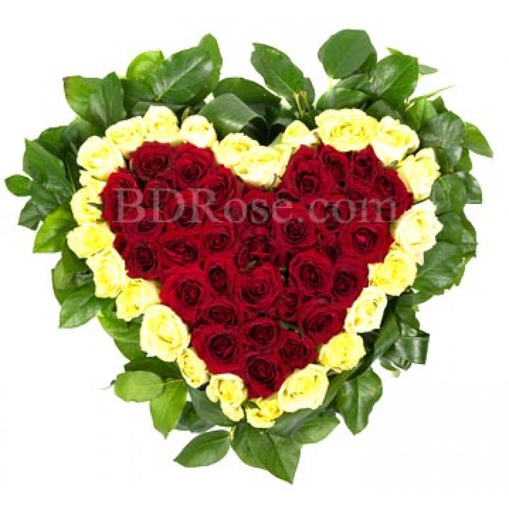 50 pcs red & white mixed roses in a heart shape basket