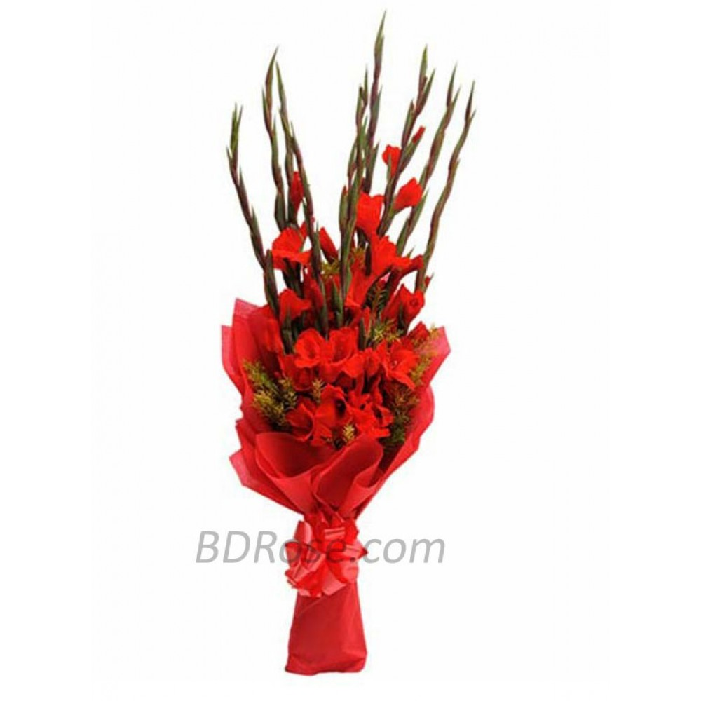 1 Dozen Gladiolus in Bouquet