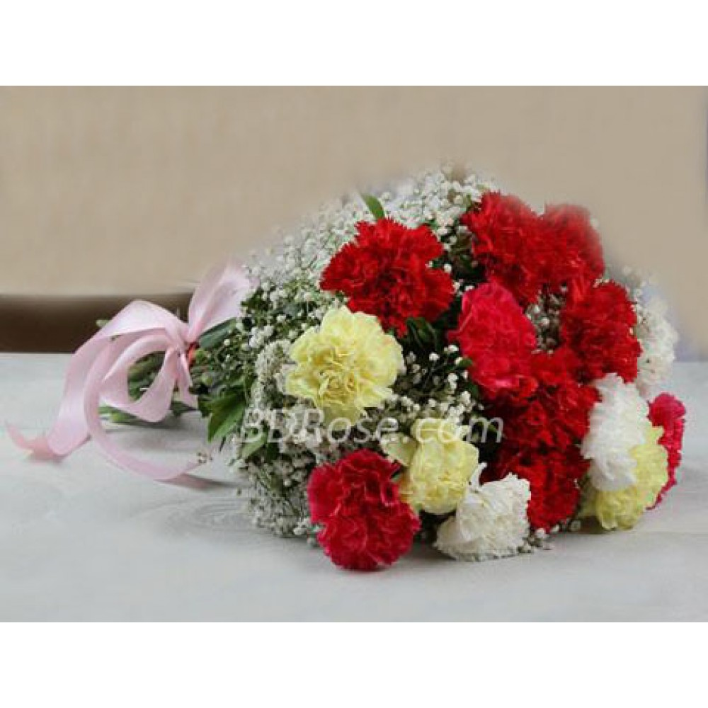 12 Pieces Mixed Carnations in Bouquet
