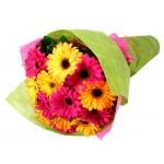 12pcs Mixed Gerbera Bouquet