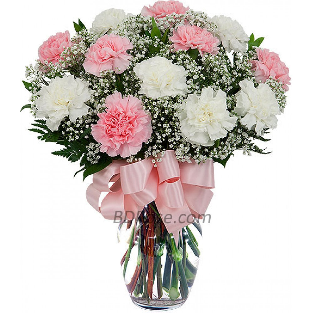 12 Pieces Mixed Carnations in a vase