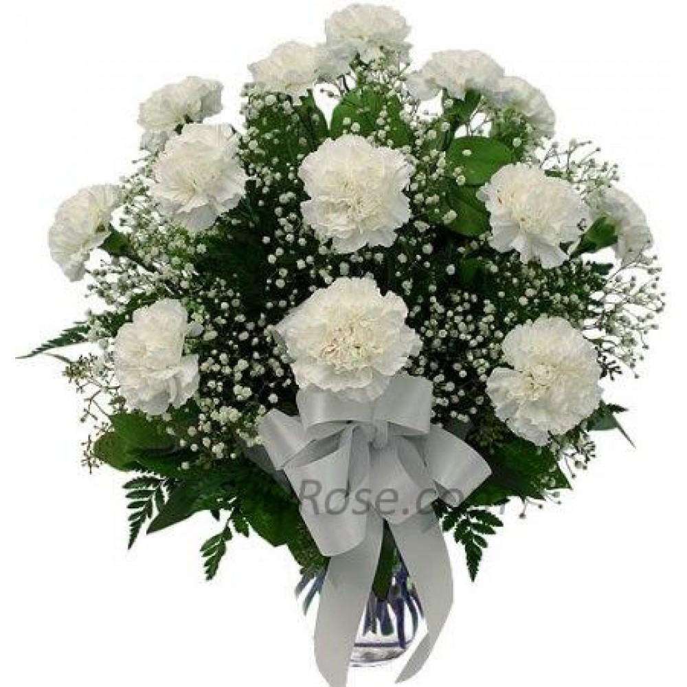 12 pcs White Carnations in a Vase