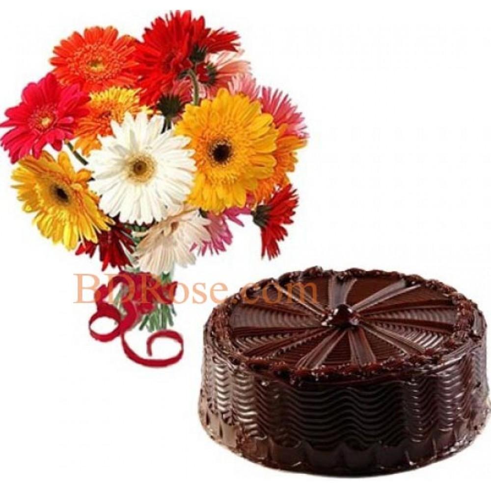 1 Dozen multicolor Gerbera W/ cake