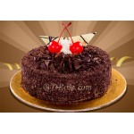 Chocolate Lady Cake(2.2 pounds)