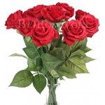 10 pcs pure red roses in bouquet