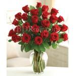 2 dozen red roses in vase