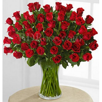 48 pcs red roses in vase