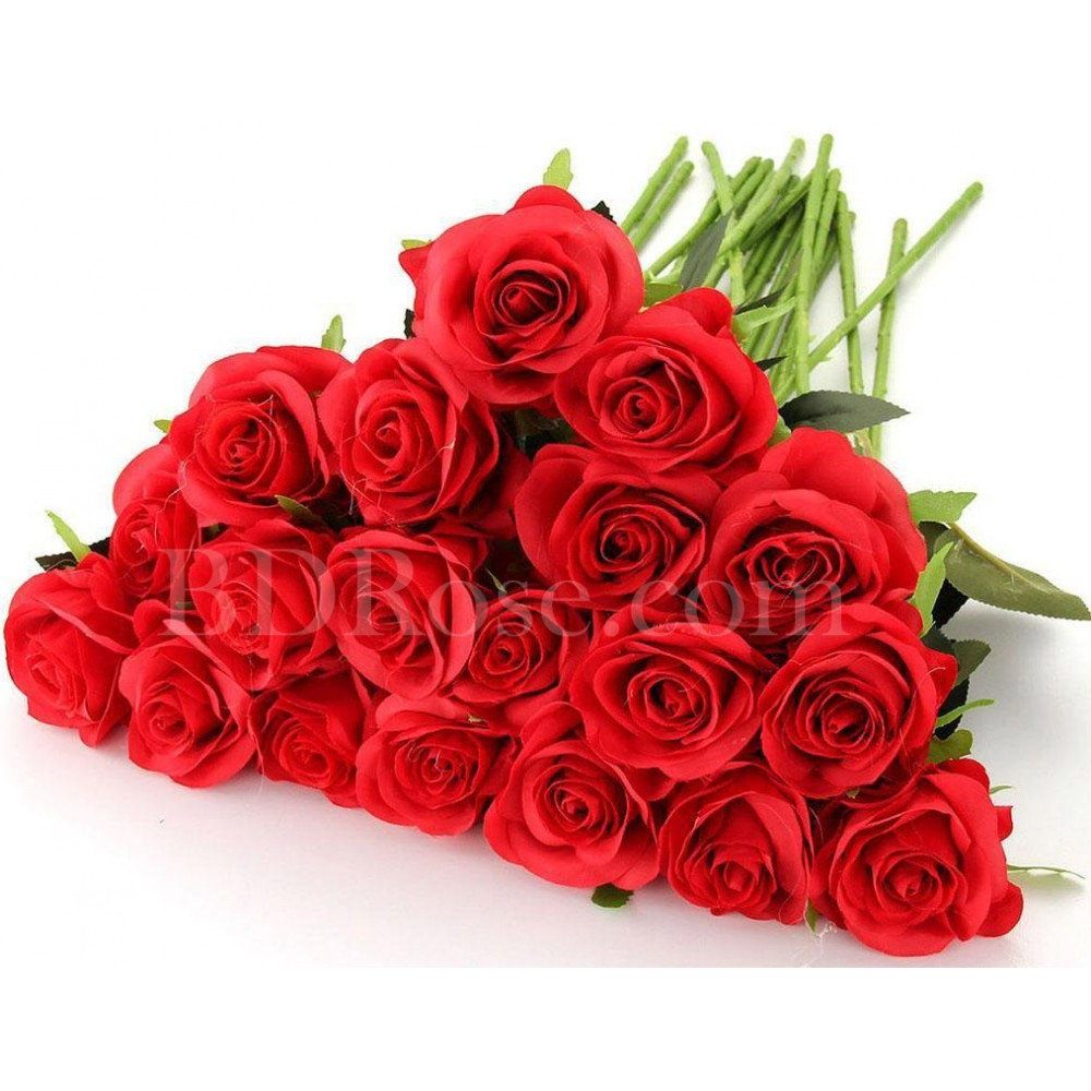 Fresh 20 pcs red roses in bouquet